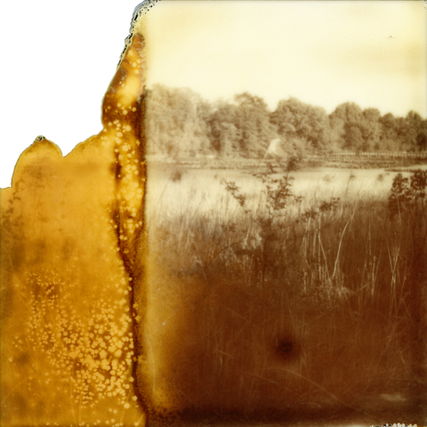 laura p krasnow memories_lost_and_found Polaroid, Digital Photography