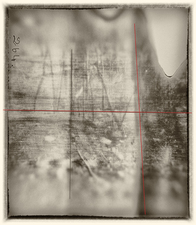 laura p krasnow pandemic Manipulated Polaroid film