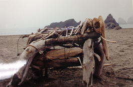 Lauren Kendrick Sleat Student Work drift wood sea kelp