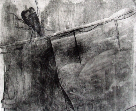 Lauren Kendrick Sleat Prints: etching, carborundum & monotypes carborundum