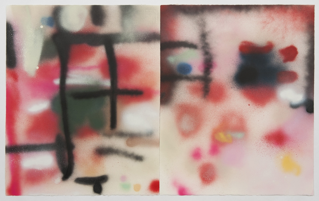 leslie baum particular histories: spray paint spray paint on arches paper