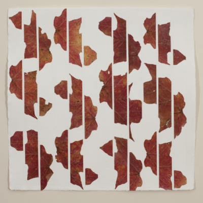 Linda Stillman Botanicals dried leaves, acrylic medium on paper