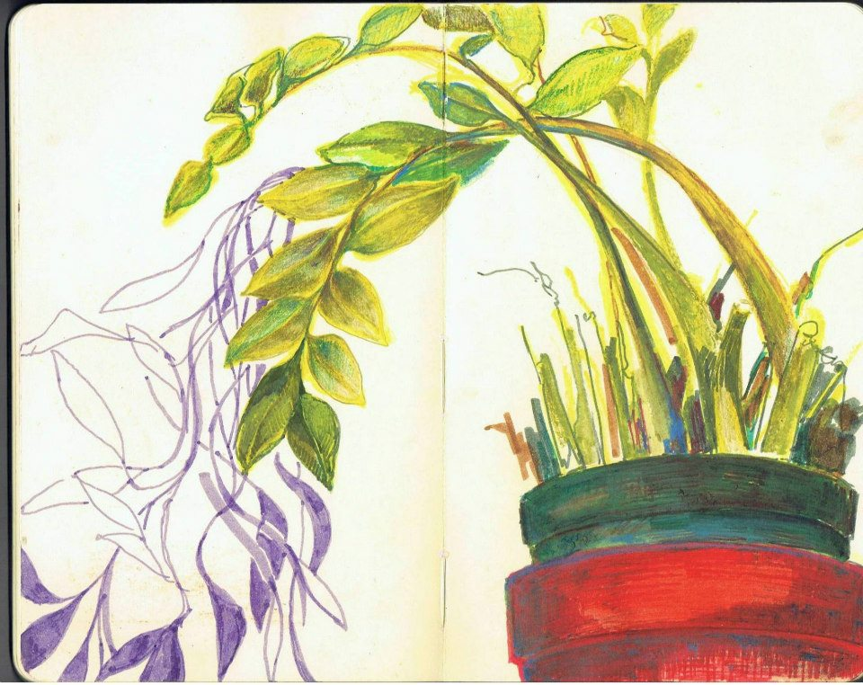 Works on Paper Lucy's Plants