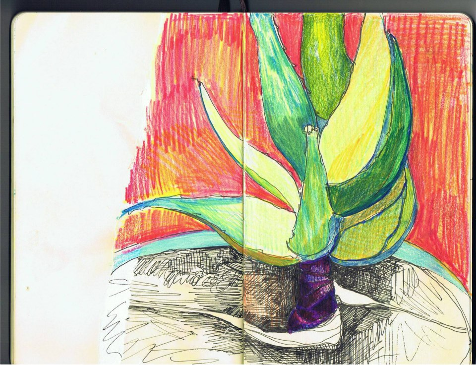 Works on Paper Emily's Cactus