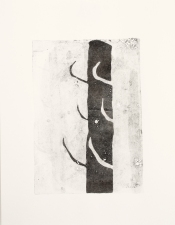 Liza Houston Monoprints Gelatin monoprint