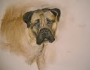 Louise Weinberg Dogs pastel pencil