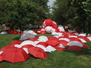 Luisa Caldwell Installations & Sculpture 500 umbrellas, zip ties