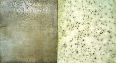 "Luisa Sartori go to ""Lines & Weather"" images Oil, silver leaf, graphite on wood"