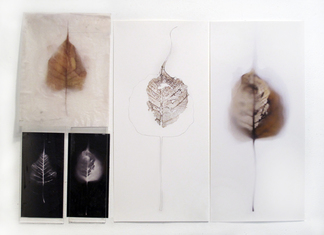 Luisa Sartori In & Out digital prints on paper and on waxed vellum