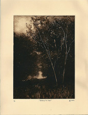 L  U  I  S   C  O  L  A  N Monotypes monotype on Arches Cover paper