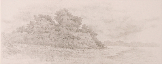 L  U  I  S   C  O  L  A  N Landscapes graphite on paper