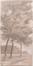 L  U  I  S   C  O  L  A  N Landscapes silverpoint and watercolor highlights on prepared toned paper