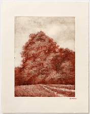 L  U  I  S   C  O  L  A  N Landscapes pen and ink over monotype ghost print, image