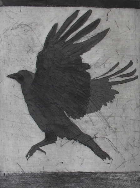 Larger Intaglio Crows A Murder of Crows no. 9 (grey winged)