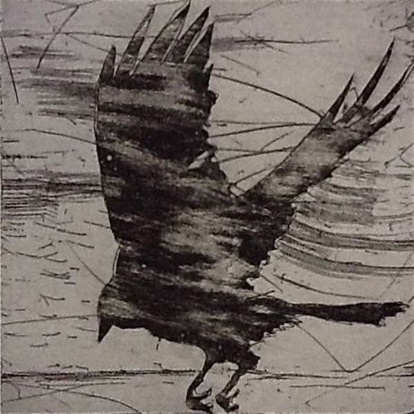 6x6 Intaglio Crows A Murder of Crows no 27 (windswept)