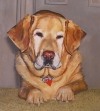 "Painting ""Sit"" oil on canvas"