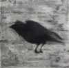 Larger Intaglio Crows intaglio-etching, aquatint, drypoint,spitbite
