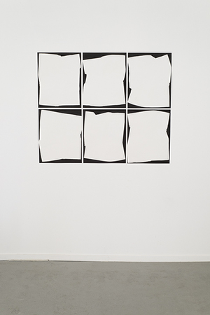 MAGGIE PRESTON BLACK VELVET 6 gelatin silver photograms