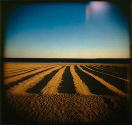 Stand-Alones chromogenic print