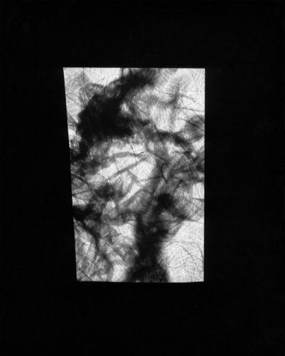 M. Apparition Dark Juices gelatin silver print