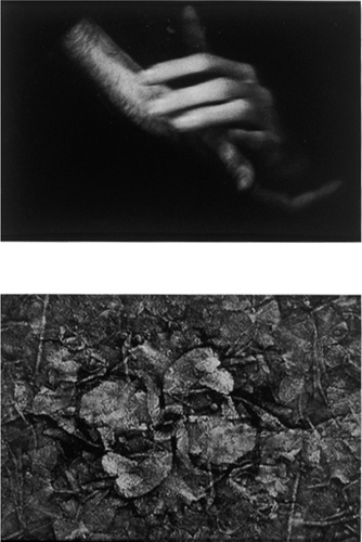 M. Apparition Dark Juices gelatin silver prints