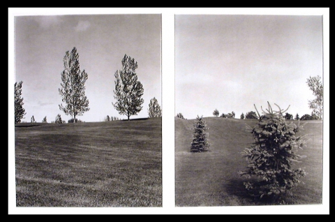 Fasle Diptych Series Palladium Prints