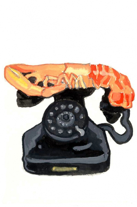 ICONOGRAPHICS PROJECT Dali: Aphrodisiac Telephone