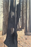 Stumps and Trees oil on linen