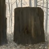 Grisaille Stumps  oil on canvas