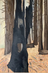 Untitled ( charred trunk)