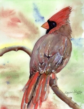 Marjorie Magidow Schalles Watercolors Watercolor