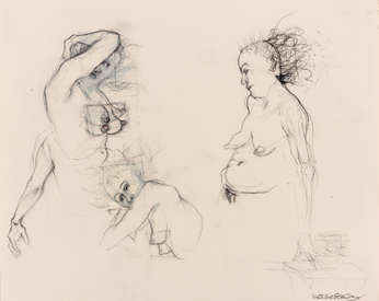 Marsha Gold Gayer Sketches charcoal pencil and pastel on paper