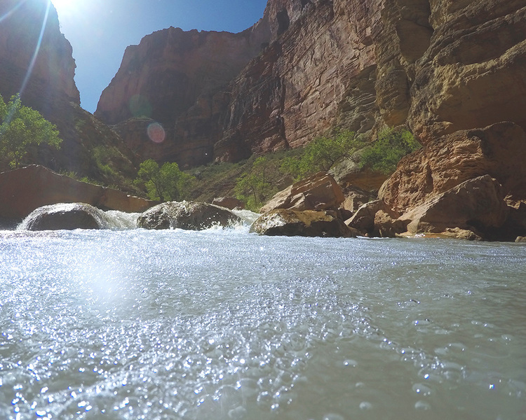 Grand Reverie Havasu Creek 3