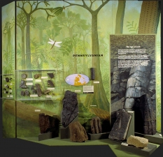 "Mary Kelsey Cleveland Museum of Natural History ""Cleveland Before Cleaveland"" Exhibition"