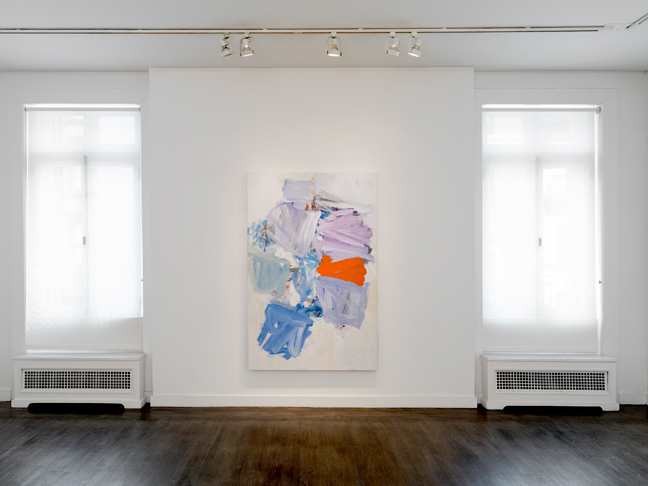 CLEAR PAUSE | Graham Gallery NYC | 2013-14