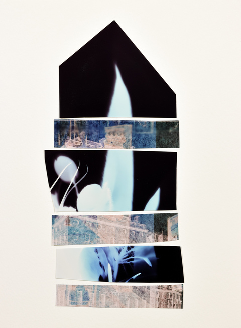 Mary Pinto Home and Garden photogram collage on paper