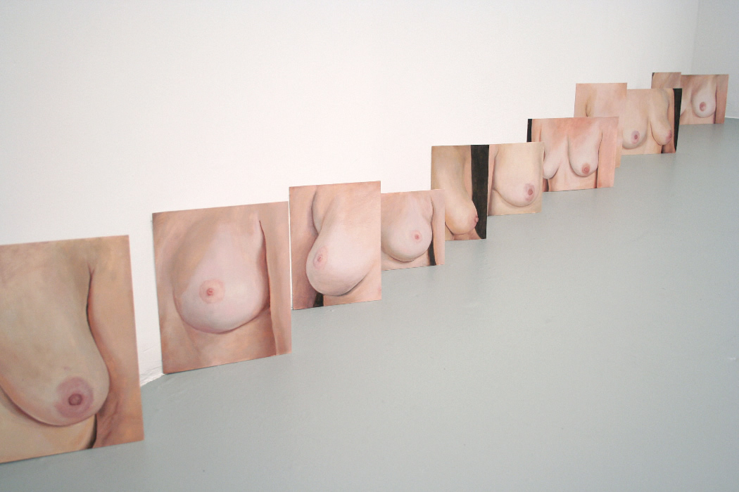 Breasts Installation view
