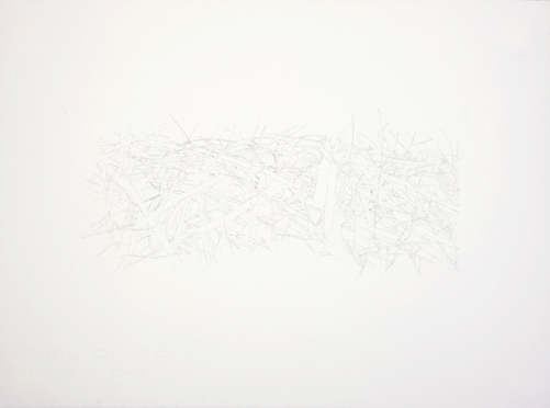 Meg Alexander beaver dam variations Ink and Graphite on Paper
