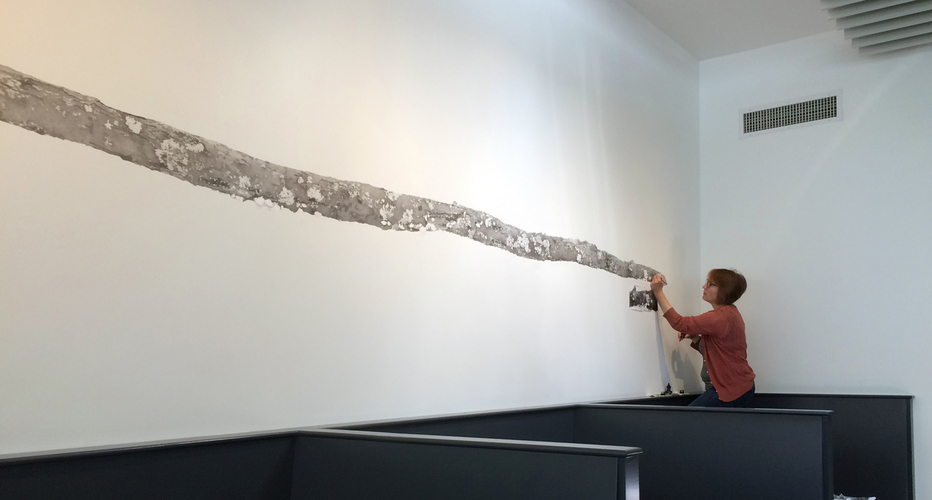 Meg Alexander shepard wall drawing