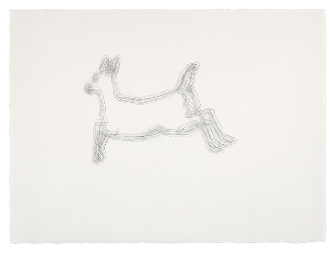Meg Alexander sorry deer series Graphite on Paper