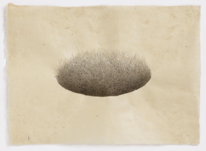 Meg Alexander hill and hole series India ink on Nepal paper