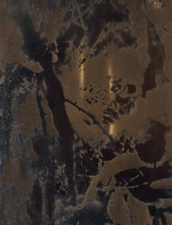 Margaret L. Holmes Untitled Metals  photography