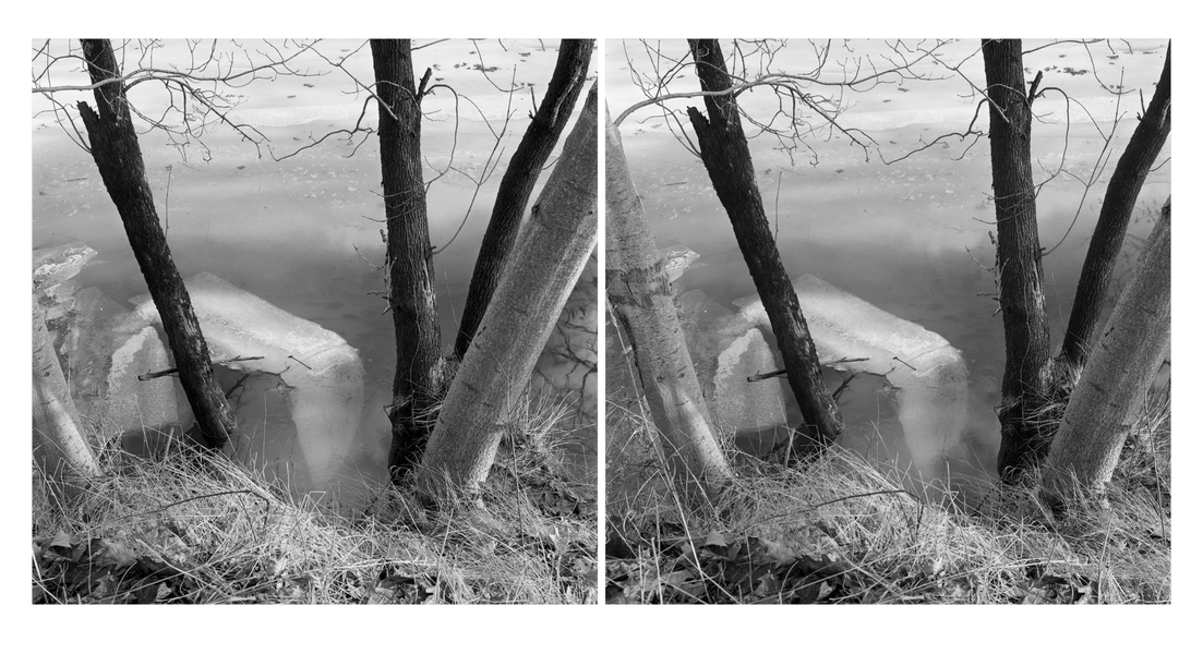 Michael Kolster Stereo Pairs archival pigment print