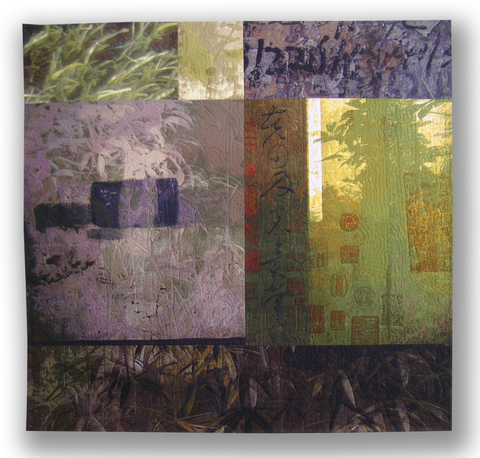 Michael James Studio Quilts Wanderings cotton & dyes
