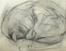 Michael Davis Paintings and Drawings Charcoal on Paper