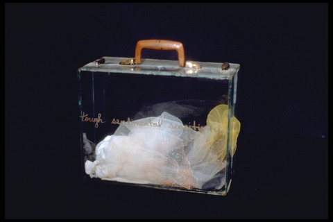 Micki Watanabe Spiller Brief Case Studies glass, found objects.