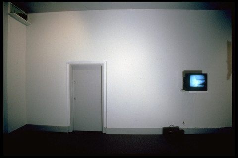 Micki Watanabe Spiller Brief Case Studies closed-circuit video installation.