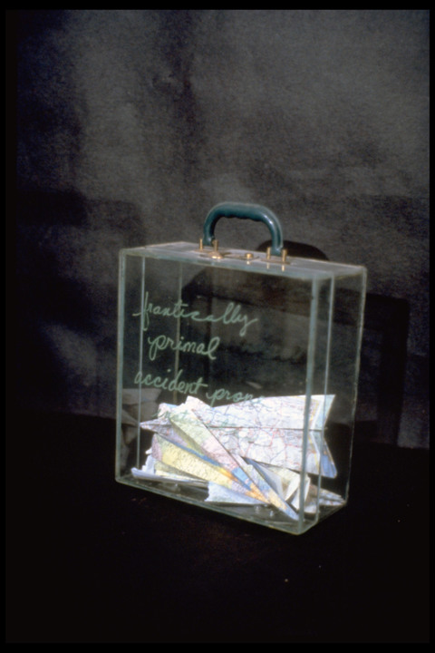 Micki Watanabe Spiller Brief Case Studies glass, found objects