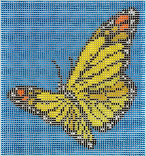Push Pins Butterfly