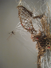 Installation Mixed Media: dry nature, paper packing material, hemp
